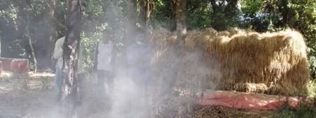 সাতকানিয়ায় কৃষকের মজুদ করা ধানে দুর্বৃত্তের আগুন