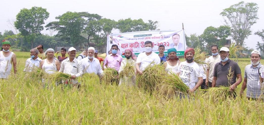তথ্য মন্ত্রী'র আহবানে রাঙ্গুনিয়ায় কৃষকের ধান কেটে দিচ্ছে কৃষকলীগ